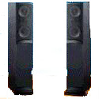 Woofer s 2x6 1 2 quot long throw co injected with linear motor